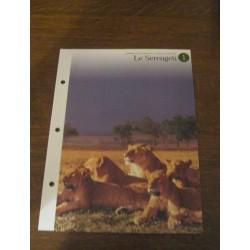 """FICHE FASCICULE """"a la découverte du monde sauvage"""" le serengeti 1 collection occasion"""