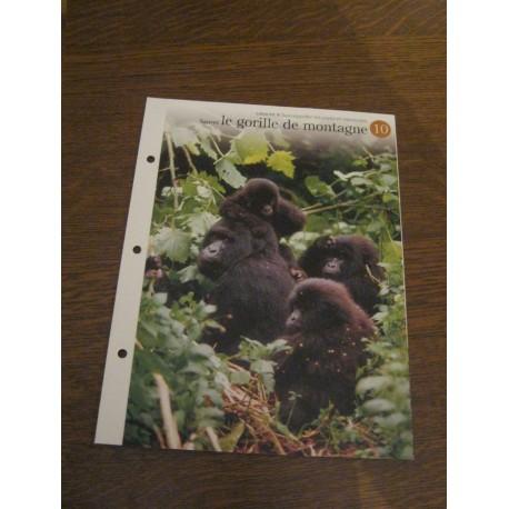 """FICHE FASCICULE """"a la découverte du monde sauvage"""" sauver le gorille de montagne 10 collection occasion"""