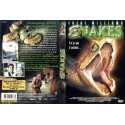 DVD zone 2 Snakes Raymond, Ed