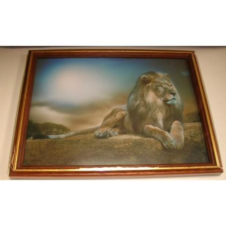cadre sous verre d coration lion savane coucher soleil. Black Bedroom Furniture Sets. Home Design Ideas