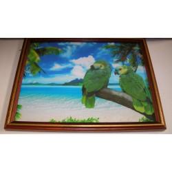 Cadre sous verre décoration oiseaux plage soleil idée cadeau original anniversaire emballé neuf