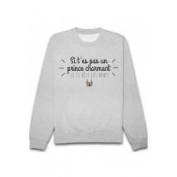 Sweatshirts unisexe - Prince charmant ... taille XS A XXL FEMME ADOS idée cadeau anniversaire neuf