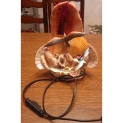 lampe salon chevet deco coquillage electrifiée be