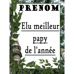 ÉLU MEILLEUR PAPY DE L'ANNÉE PLAQUE DECORATIVE SUR FAÏENCE IDÉE CADEAU ANNIVERSAIRE FÊTE DES GRAND PÈRES NOËL NEUVE