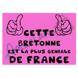 Cette Bretonne est la + géniale de France fond rose plastifié idée cadeau anniversaire fête noel neuve emballée