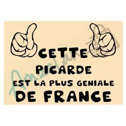 Cette Picarde est la + géniale de France fond beige plastifié idée cadeau anniversaire fête noel neuve emballée