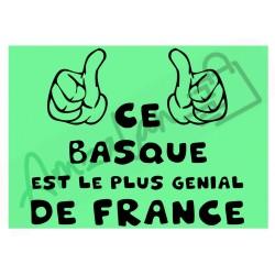 Ce Basque est le + génial de France fond vert homme plastifié idée cadeau anniversaire fête noel neuve emballée