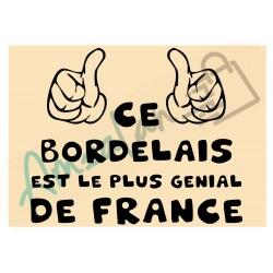 Ce Bordelais est le + génial de France fond beige homme plastifié idée cadeau anniversaire fête noel neuve emballée
