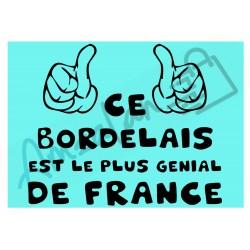 Ce Bordelais est le + génial de France fond bleu homme plastifié idée cadeau anniversaire fête noel neuve emballée