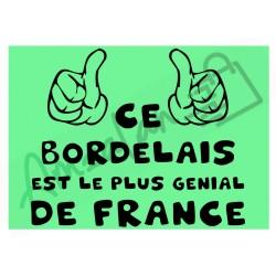 Ce Bordelais est le + génial de France fond vert homme plastifié idée cadeau anniversaire fête noel neuve emballée