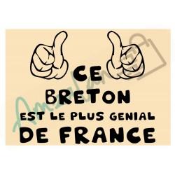 Ce Breton est le + génial de France fond beige homme plastifié idée cadeau anniversaire fête noel neuve emballée