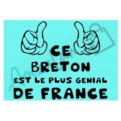 Ce Breton est le + génial de France fond bleu homme plastifié idée cadeau anniversaire fête noel neuve emballée