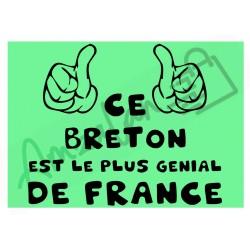 Ce Breton est le + génial de France fond vert homme plastifié idée cadeau anniversaire fête noel neuve emballée
