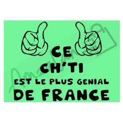 Ce Ch'ti est le + génial de France fond vert homme plastifié idée cadeau anniversaire fête noel neuve emballée