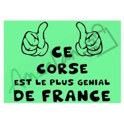 Ce Corse est le + génial de France fond vert homme plastifié idée cadeau anniversaire fête noel neuve emballée