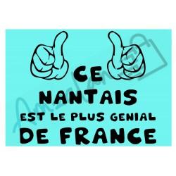Ce Nantais est le + génial de France fond bleu homme plastifié idée cadeau anniversaire fête noel neuve emballée