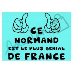 Ce Normand est le + génial de France fond bleu homme plastifié idée cadeau anniversaire fête noel neuve emballée
