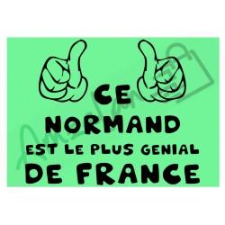 Ce Normand est le + génial de France fond vert homme plastifié idée cadeau anniversaire fête noel neuve emballée