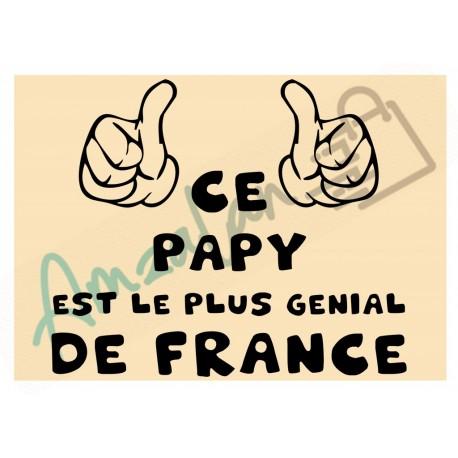 Ce papy est le + génial de France fond beige homme plastifié idée cadeau anniversaire fête noel neuve emballée