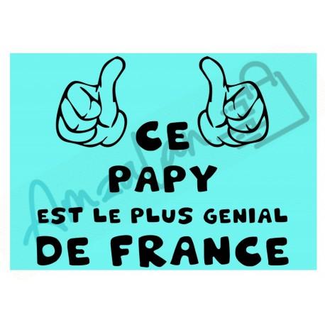 Ce papy est le + génial de France fond bleu homme plastifié idée cadeau anniversaire fête noel neuve emballée