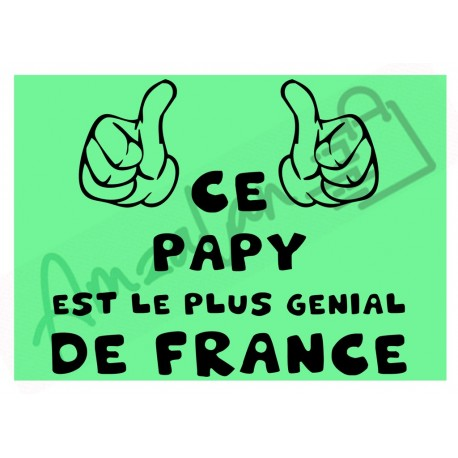 Ce papy est le + génial de France fond vert homme plastifié idée cadeau anniversaire fête noel neuve emballée