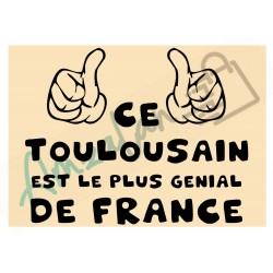 Ce Toulousain est le + génial de France fond beige homme plastifié idée cadeau anniversaire fête noel neuve emballée