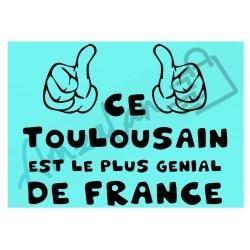 Ce Toulousain est le + génial de France fond bleu homme plastifié idée cadeau anniversaire fête noel neuve emballée