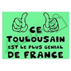 Ce Toulousain est le + génial de France fond vert homme plastifié idée cadeau anniversaire fête noel neuve emballée