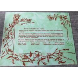 """Signification du prénom """" VALÉRIANE """" idée cadeau fête des mères grand mères anniversaire noel Neuf"""