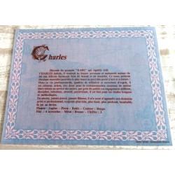"Signification du prénom "" CHARLES V2 "" idée cadeau original fête des pères grands pères noel neuf"
