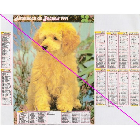Calendrier de naissance plastifié année 1991 Idée cadeau original anniversaire fête noël neuf