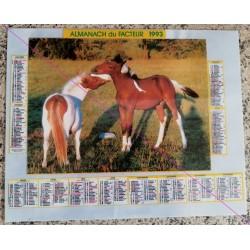 Calendrier de naissance plastifié année 1993 Idée cadeau original anniversaire fête noël neuf