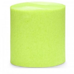 Rouleau de papier crépon Vert anis 10 m loisirs créatif scrapbooking décoration de table ou salle neuf