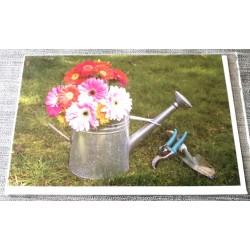 Carte postale avec enveloppe sans texte anniversaire fête retraite etc... floral 01 neuve