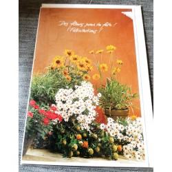 Carte postale avec enveloppe félicitations diverses modèle floral multi fleurs neuve