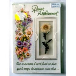 Carte postale double avec enveloppe bon rétablissement marque page fleur naturelle blanche neuve