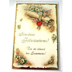 Carte postale double avec enveloppe bravo félicitations pour tes examens neuve