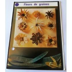 """FICHE MAISON de ELLE vintage rétro par Jacqueline Chaumont """" fleurs de graines """" collection occasion"""