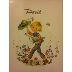 """Prénom sur faience a encadré ou poser """" DAVID"""" neuf"""