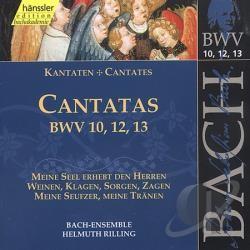 CD MUSIQUE CLASSIQUE cantatas bwv VOL 10 - 12 - 13 Occasion très bon état