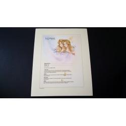 Diplome signe astrologique - Zodiaque - Gémeaux - idée cadeau anniversaire fête Neuf