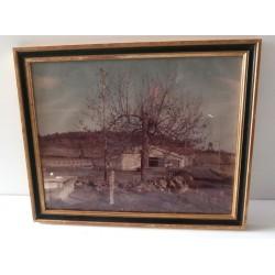 Ancien cadre sous verre contour bois photographie inconnue ancienne